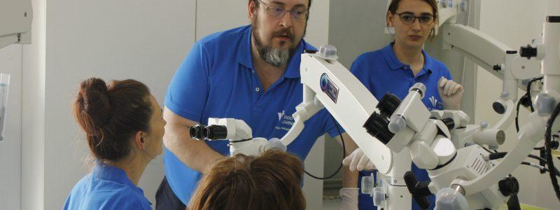 Cursuri Endodontie Microscopica ENDOLearning Iasi